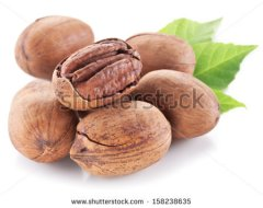 stock-photo-pecan-nuts-with-leaves-isolated-on-a-white-background-158238635